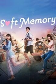 Soft Memory