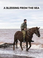 A Blessing from the Sea (17