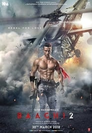 Baaghi 2 (2018) Hindi HDRip 480P 720P x264