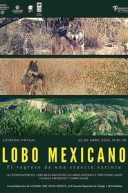 Watch Lobo Mexicano (2020)