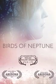 Poster Birds of Neptune 2015