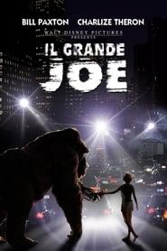 Il grande Joe 1998