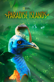 Paradise Islands 2017