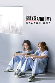 Grey's Anatomy: Temporada 1