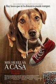 Mis huellas a casa (A Dog's Way Home)