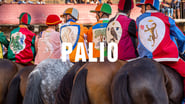 EUROPESE OMROEP | Palio