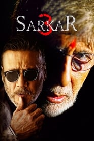 Watch Sarkar 3 Full HD Movie Online Free Download