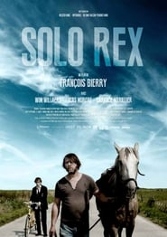 Solo Rex (2014) Online Cały Film Lektor PL