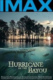 Hurricane on the Bayou 2006