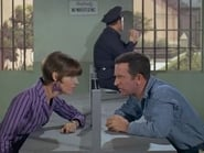 """""""Get Smart"""" The Whole Tooth and..."""