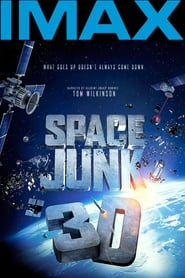 Space Junk 2012