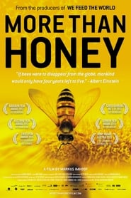 Poster More Than Honey 2012