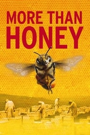 Poster for More Than Honey