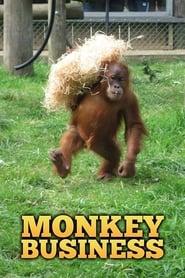 Monkey Business 1997