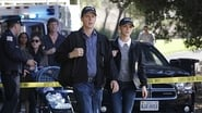 NCIS Season 12 Episode 4 : Choke Hold