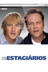 Os Estagiários (2013) Assistir Online