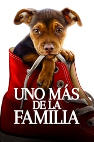 Mis huellas a casa (2019) A Dog's Way Home