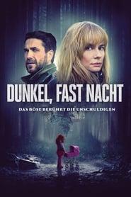 Dunkel, fast Nacht (2019)