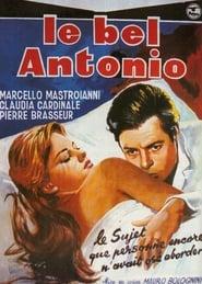 Le bel Antonio 1960