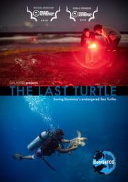 The Last Turtle (2019)