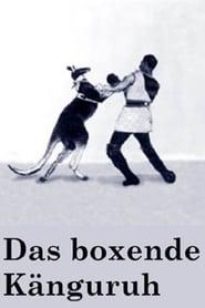 Das boxende Känguruh