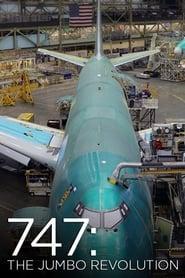 747: The Jumbo Revolution 2014