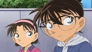 Ai Haibara Imprisonment Case