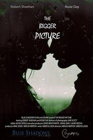 The Bigger Picture (2020) Torrent