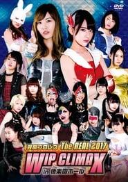 Tofu Pro-Wrestling (2017)