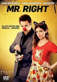 Mr. Right (Mi novio el asesino perfecto) (2015)