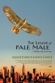 Poster for The Legend of Pale Male