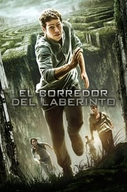 El corredor del laberinto (2014) | The Maze Runner