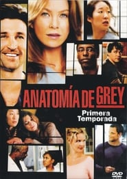 Grey's Anatomy - Temporada 9