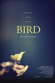 Bird (2017) Online Cały Film Lektor PL