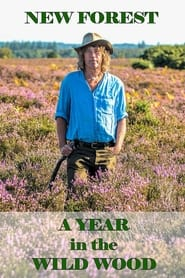 New Forest: A Year in the Wild Wood 2019