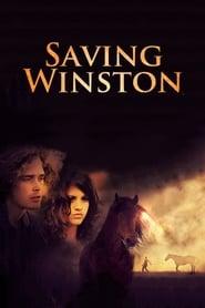 Saving Winston (2011)