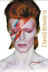 David Bowie Is Happening Now 2014