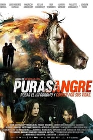 Purasangre (Thoroughbred)