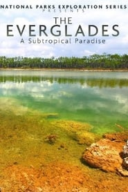 National Parks Exploration Series: The Everglades