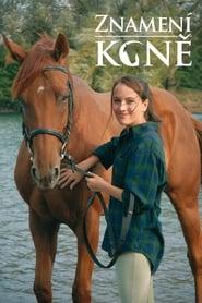 Znamení koně 2011
