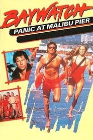 Baywatch: Panic at Malibu Pier streaming