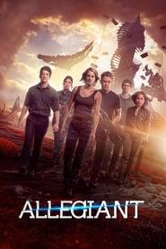 Poster Allegiant
