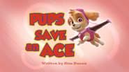 Pups Save an Ace
