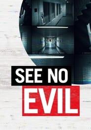 See No Evil 2014