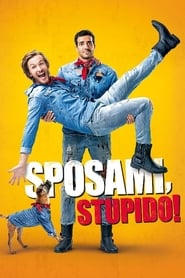 Sposami, stupido! (2017)