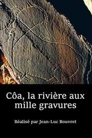 Côa, La Rivière Aux Mille Gravures