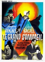 Le Grand Sommeil en streaming