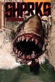 Shark in Venice 2008