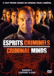 Esprits criminels streaming