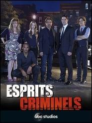 Poster Esprits criminels 2020
